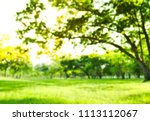 photo blur park beautiful tree | Shutterstock . vector #1113112067