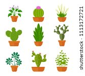 decorative cactuses with... | Shutterstock . vector #1113172721