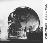 black and white crystal skull... | Shutterstock . vector #1113175037