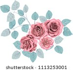 winter  roses _ stylized vector ... | Shutterstock .eps vector #1113253001