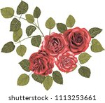 red roses   high quality vector ... | Shutterstock .eps vector #1113253661