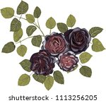 black roses bouquet | Shutterstock .eps vector #1113256205