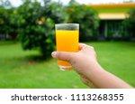 hand holding glass of fresh... | Shutterstock . vector #1113268355