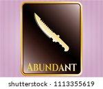 golden badge with combat...   Shutterstock .eps vector #1113355619