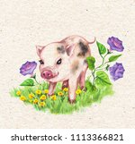 hand drawn cute miniature pig... | Shutterstock . vector #1113366821