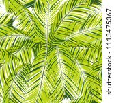 palm seamless pattern. exotic... | Shutterstock .eps vector #1113475367
