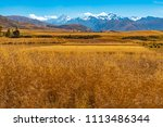 a beautiful wheat field in the... | Shutterstock . vector #1113486344
