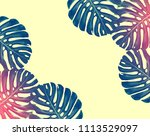 green leaf of a tropical flower ... | Shutterstock . vector #1113529097
