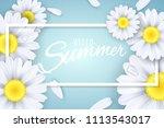 hello summer. seasonal banner.... | Shutterstock .eps vector #1113543017