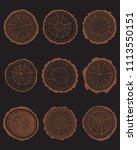 set of cross section of... | Shutterstock .eps vector #1113550151