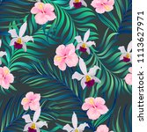 vector tropical seamless... | Shutterstock .eps vector #1113627971