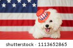 bichon frise dog with american... | Shutterstock . vector #1113652865