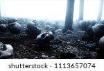 scary old skulls in fog night... | Shutterstock . vector #1113657074