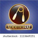 shiny badge wit golden emblem ... | Shutterstock .eps vector #1113669251