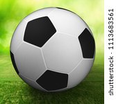 football 3d rendering | Shutterstock . vector #1113683561
