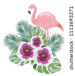 vector illustration of tropical ... | Shutterstock .eps vector #1113693371