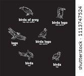 birds of prey set. bird... | Shutterstock .eps vector #1113747524