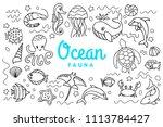 ocean fauna cute cartoon doodle ...   Shutterstock . vector #1113784427