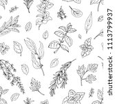 pattern color herbs. spices.... | Shutterstock .eps vector #1113799937