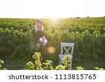 cute young blond girl sits on a ... | Shutterstock . vector #1113815765