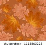 autumn seamless  pattern from... | Shutterstock . vector #1113863225