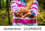 hands of a young blond woman... | Shutterstock . vector #1113968255