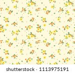 vintage floral background.... | Shutterstock .eps vector #1113975191