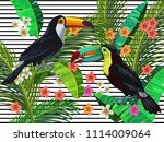 vector painting with tropical...   Shutterstock .eps vector #1114009064