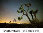 usa  california  san bernadino... | Shutterstock . vector #1114021541