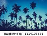 beautiful outdoor view with... | Shutterstock . vector #1114108661