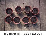 top view of flower pots filled... | Shutterstock . vector #1114115024