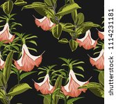 tropical plants  paradise... | Shutterstock .eps vector #1114231181