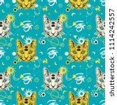 80s 90s style seamless pattern... | Shutterstock .eps vector #1114242557