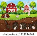 rabbit house underground the...   Shutterstock .eps vector #1114246244