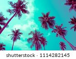 coconut palm trees   tropical... | Shutterstock . vector #1114282145