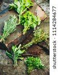 fresh herbs. culinary... | Shutterstock . vector #1114284677