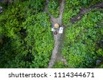 aerial drone flight over... | Shutterstock . vector #1114344671