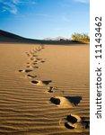 Footprints In The Desert Or...