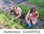 closeup image of two teenage... | Shutterstock . vector #1114357511