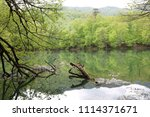bolu  yedig ller national park  ... | Shutterstock . vector #1114371671