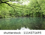 bolu  yedig ller national park  ... | Shutterstock . vector #1114371695