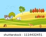 countryside vector scene  cows  ... | Shutterstock .eps vector #1114432451