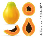 realistic papaya set. full... | Shutterstock .eps vector #1114445867