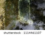 texture of water with...   Shutterstock . vector #1114461107