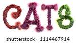 3d rendering of word cats... | Shutterstock . vector #1114467914