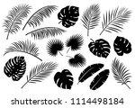 tropical jungle black palm... | Shutterstock . vector #1114498184