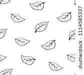 outline mint leaf seamless... | Shutterstock .eps vector #1114585337