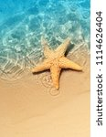 starfish on the summer beach in ... | Shutterstock . vector #1114626404