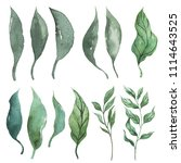 tropical leaves. watercolor... | Shutterstock . vector #1114643525