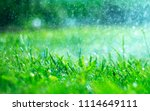 grass with rain drops. watering ... | Shutterstock . vector #1114649111